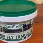 How to Remove Fly Trap Glue from Wall